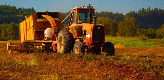 Fourth Generation Farmer